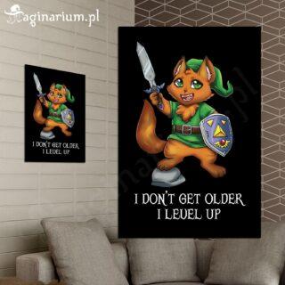 Plakat I don't get older, I level up