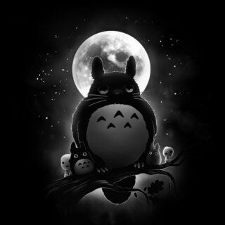 Totoro Sowa
